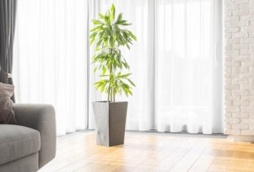 Foyer: un atout et des crédits à connaitre avant votre prochain achat