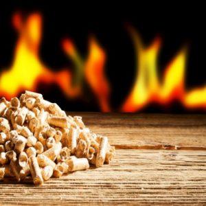 Bois, granules, gaz ou électricité : Quel combustible vous convient le mieux ?