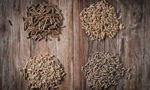 6 faits sur les granules