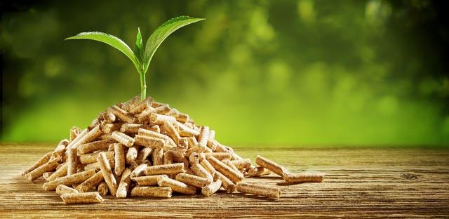 Pourquoi chauffer aux granules, pourquoi est-ce avantageux de chauffer avec des granules de bois. Granules de bois, bon pour l'environement.