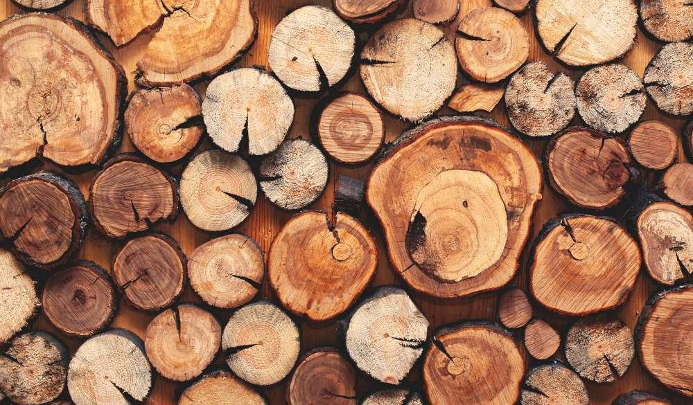 Chauffer avec des bûches de bois? Quel combustible devrais-je choisir?